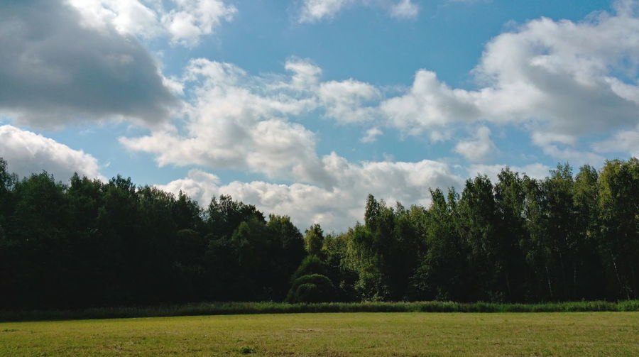 Trees on field against cloudy sky