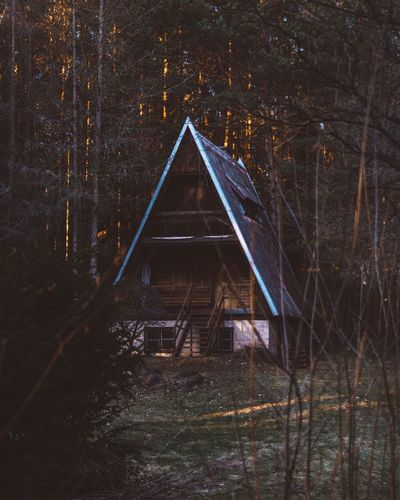 Tree Forest Nature No People Outdoors Built Structure Tranquility Tranquil Scene Landscape Night Beauty In Nature Cabin Cabin In The Woods Cabin Life Cabincrew Cabins  Adventure Chilling Chillout Camping Campinglife Holiday Holidays Woods