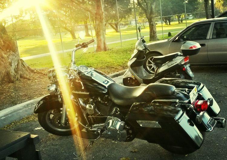 Harleyrocks Ray Of Light 143 1nation1day
