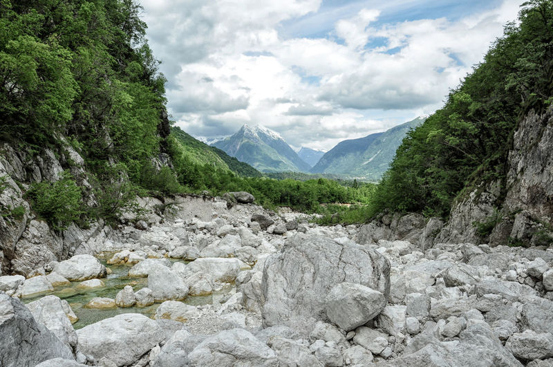 Der Fluss Boka unterhalb der Boka-Wasserfälle Alpen Alps Beauty In Nature Boka Cloud - Sky Day Growth Julian Alps Julische Alpen Landscape Mountain Nature No People Outdoors River Scenics Sky Tree Triglav