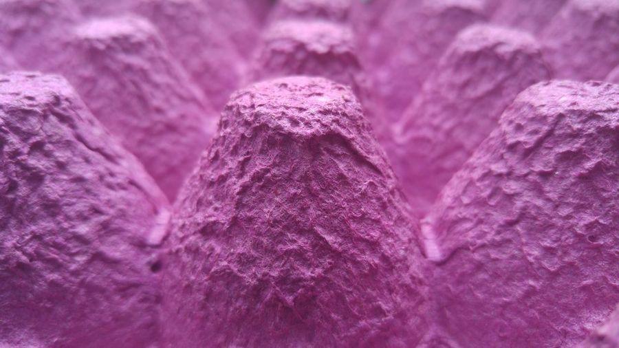 Full frame shot of purple egg carton