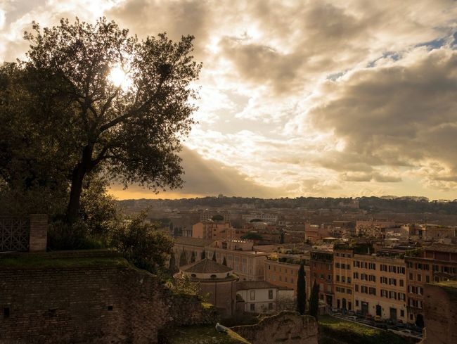 City Cityscape Ancient EyeEm Best Shots EyeEmNewHere Buildings & Sky Rome History Antique Day Sky