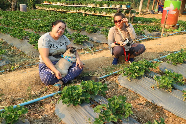 Portrait of friends sitting at vegetable garden