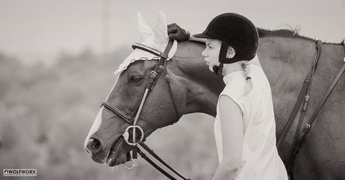 Butterfly moments at shows... @Instag_app Horses Horse Horsesofinstagram Horseshow Pentax Wolfworx Horses_of_instagram Horsestagram Instahorses Bond Team Mane Beautiful Pretty Bnw Bnw_society Rider Riders Riding