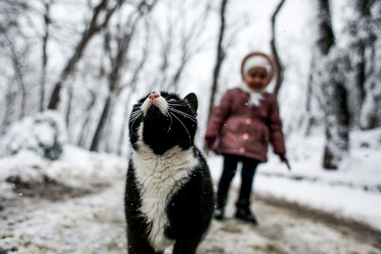 My daughter and cat in winter. EyeEm Nature Lover EyeEm Selects Friendship Retriever Pets Cold Temperature Winter Snow Tree Dog Child Warm Clothing