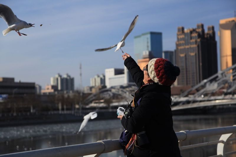 Woman Feeding Seagulls Over River In City