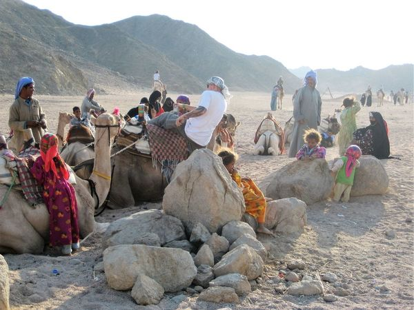 Landscape Leisure Activity Lifestyles Medium Group Of People Mixed Age Range Mountain Mountain Range Outdoors Relaxation Rock - Object Rock Formation Scenics Tourism Tourist Tranquil Scene Tranquility Travel Destinations Vacations Beduines Camel Riding Camels Desert Hurghada Egypt People And Places