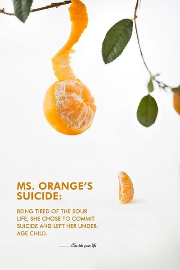 Orange Food And Drink Food Text Orange Color Plant Part Leaf Studio Shot No People Indoors  Freshness Orange - Fruit Orange Citrus Fruit Nature Plant