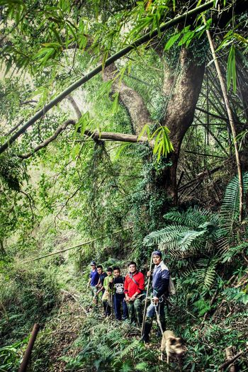 Shenmu Nature Huge