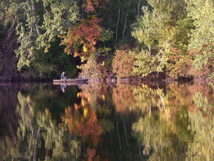 Fadd Magyarország Duna Folyo River Riverside Holtág Deadriver Horgasz Angler ősz Ősz Autumn Autumn Autumn Colors Tükröződés Reflection Landscapes With WhiteWall