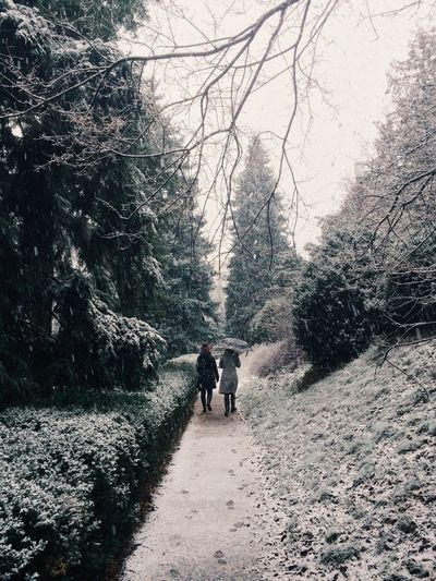 Women walking on snowy pathway amidst trees at park
