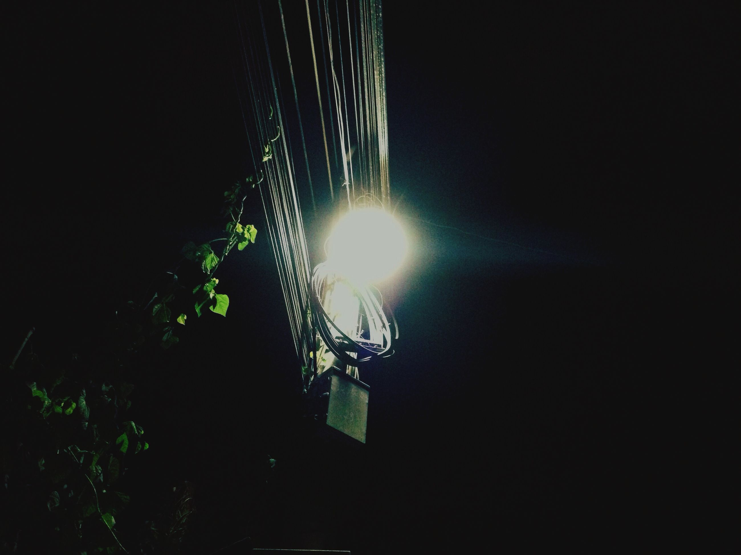 illuminated, night, low angle view, lighting equipment, glowing, electricity, light - natural phenomenon, electric light, dark, no people, hanging, electric lamp, copy space, street light, decoration, sky, light, technology, light bulb, outdoors