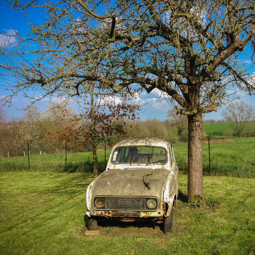 Abandoned car on field against trees