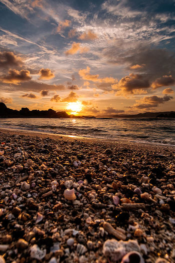 Sea shells on the Semeti shore. Sea Seashells Seascape Shore Sunset