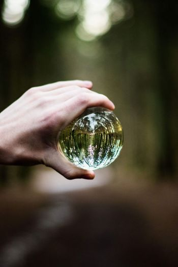 Close-up of hand holding crystal ball with reflection in forest