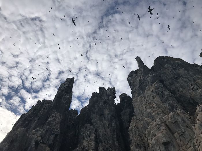 Low Angle View Of Silhouette Birds Flying Over Mountains Against Cloudy Sky