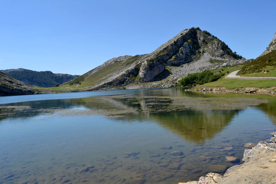 View of Lake Enol at Lakes of Covadonga in Asturias, Spain Asturias Blue Clear Sky Covadonga Enol Lake Field Lago Enol Lagos De Covadonga Lake Lakes  Landscape Meadows Mountain Nature Outdoors Peak Picos De Europa Picturesque Reflection Rural Scenic Sightseeing Tourism Travel Water