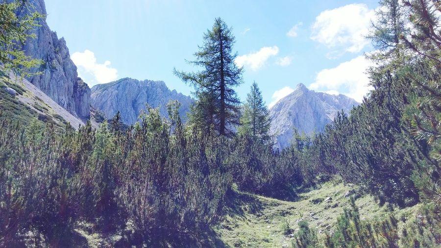 Karawanken Alps