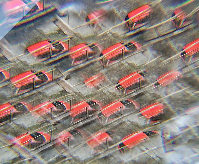 Traffic Car Red