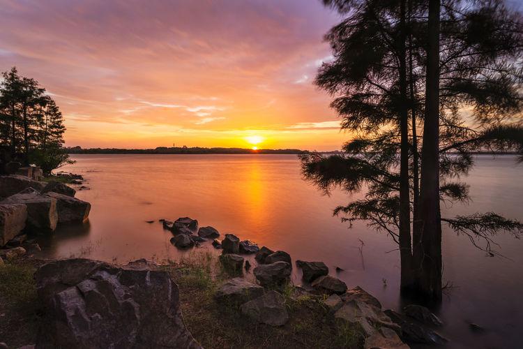 sunset Idyllic Lake Orange Color Sky Sun Sunset Tranquility Tree Water