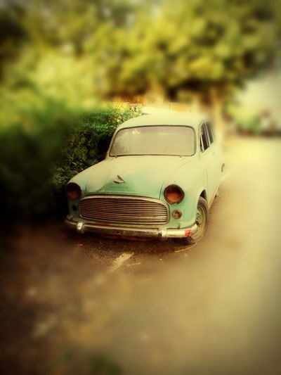 Ambassador a past glory of indian automobile industry and true vintage car let us hope that one day it will be back with same value First Eyeem Photo