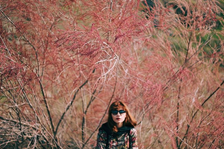 I see pink Pink Tree Autumn One Person Only Women One Woman Only Winter Looking At Camera Portrait Forest Branch Front View Young Women Outdoors Headshot Beauty