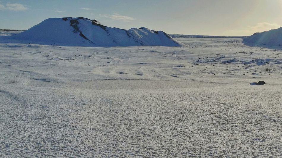 Frozen wilderness Snow Snowlandscape Landscape Landscape_Collection Landscape_photography EyeEm Best Shots - Landscape Landscape #Nature #photography EyeEm Gallery Eyem Best Shots Deepfreeze