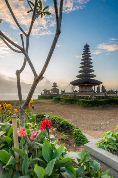 Pura Ulun Danu Bratan, a major Shivaite temple in Bali, Indonesia Architecture ASIA Bali City Day Flower Hindu Hindu Temple Hinduism House Of Worship INDONESIA Lake Nature No People Outdoors Pura Ulun Danu Bratan Temple Religion Sky Temple Tourist Tourist Attraction  Travel Travel Travel Destinations Tree