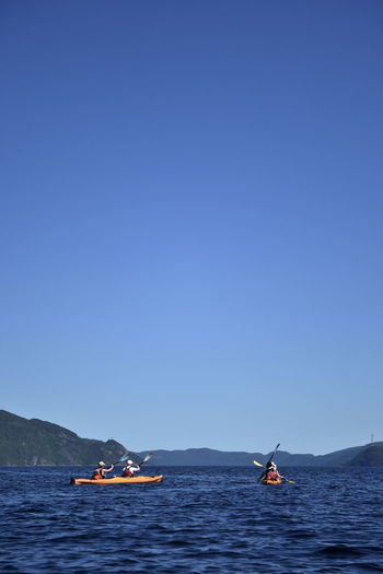 Sea Kayak Sea Kayaking Adventure Beauty In Nature Blue Clear Sky Copy Space Day Fjord Kayak Mode Of Transport Mountain Mountain Range Nature Nautical Vessel Outdoors Paddling People Real People Sea Sky Tranquility Transportation Vacations Water