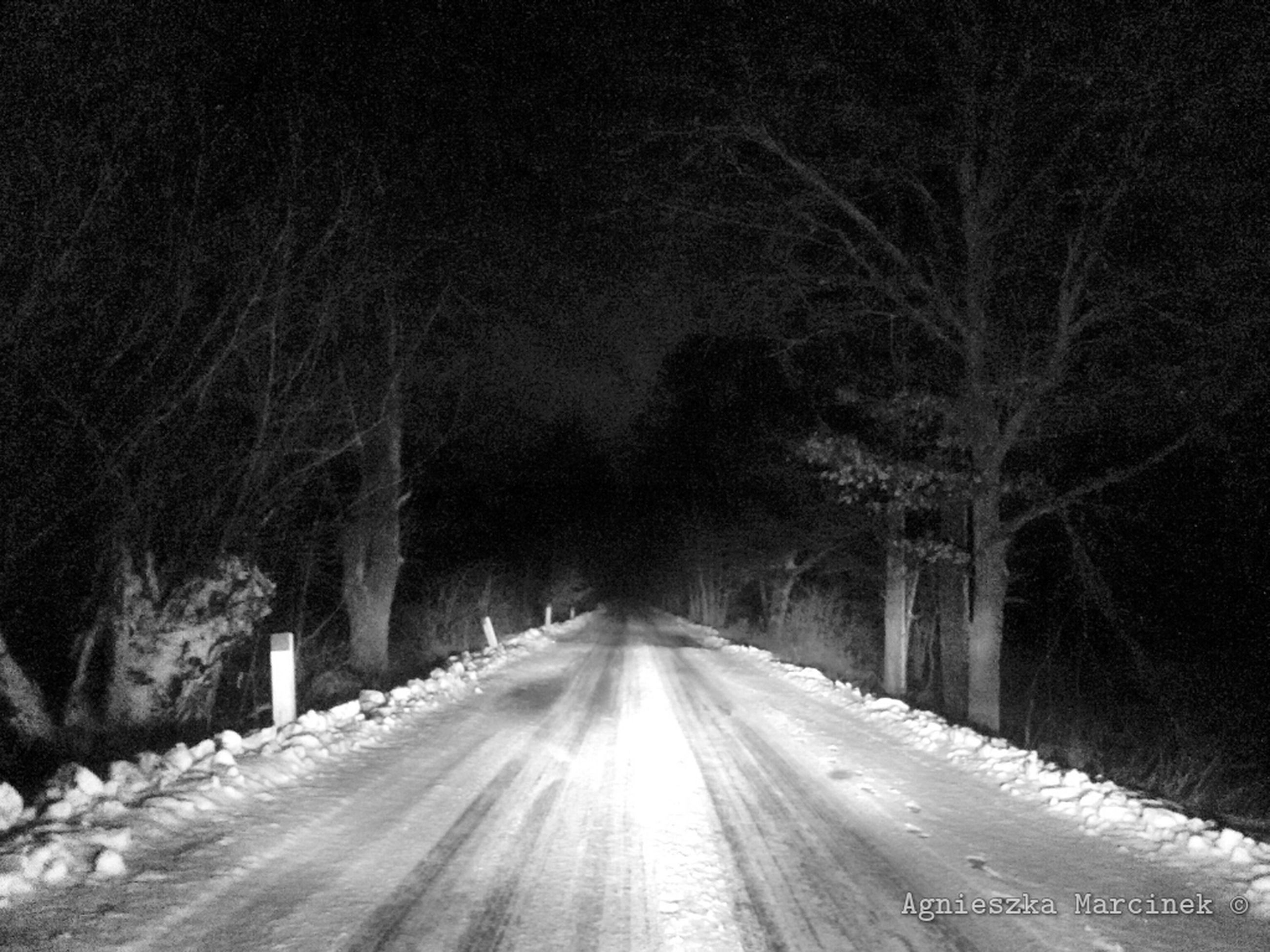 the way forward, snow, winter, cold temperature, diminishing perspective, road, transportation, vanishing point, tree, weather, season, empty road, covering, night, street, nature, bare tree, road marking, white color, long