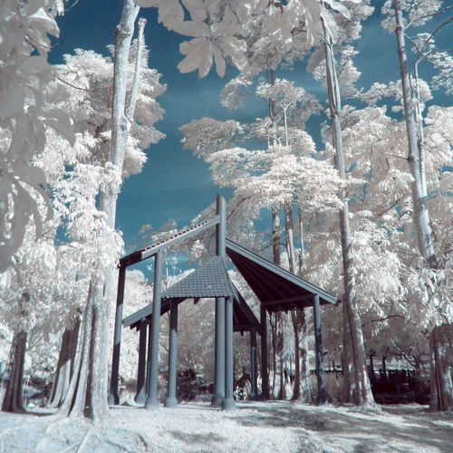 Shootermag Malaysia Nature Hello World Landscape Infrared Photography Protecting Where We Play