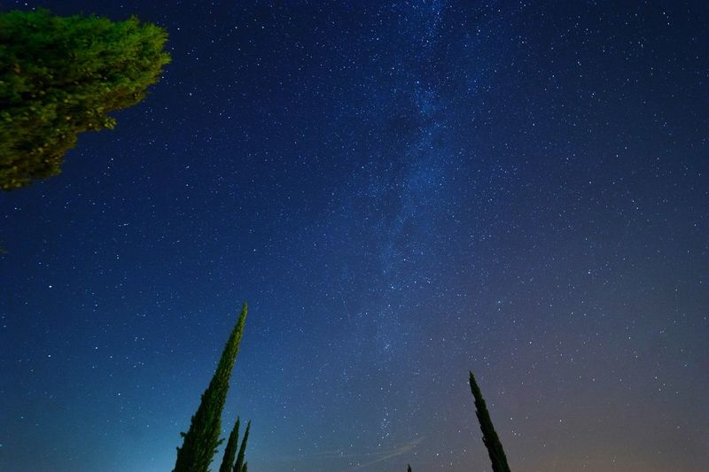 Night Star - Space Beauty In Nature Nature Low Angle View Tranquility Sky No People Tranquil Scene Astronomy Scenics Blue Galaxy Star Field Outdoors Tree Growth Space Milky Way Italy Tuscany Tuscany Countryside The Week On EyeEm EyeEm Best Shots