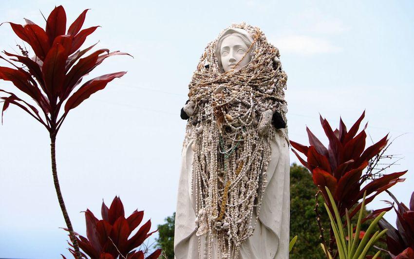 Kona Madonna Hawaiian Kona Painted Church Statue Madonna Shells Sea Shells Necklace Necklaces