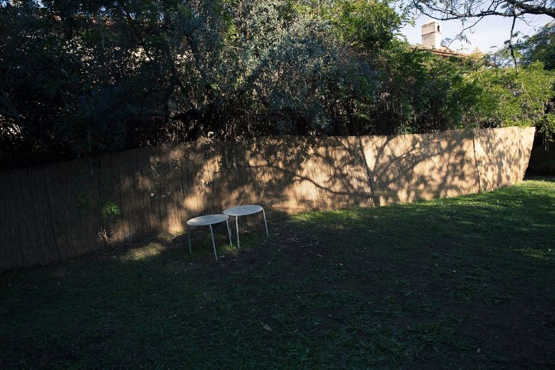 Empty chair against plants