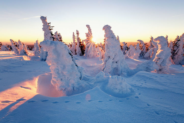 Sky Winter Snow Cold Temperature Sunset Beauty In Nature Scenics - Nature Nature Tranquil Scene Tranquility No People Land Landscape Non-urban Scene Covering Environment Orange Color Field Frozen