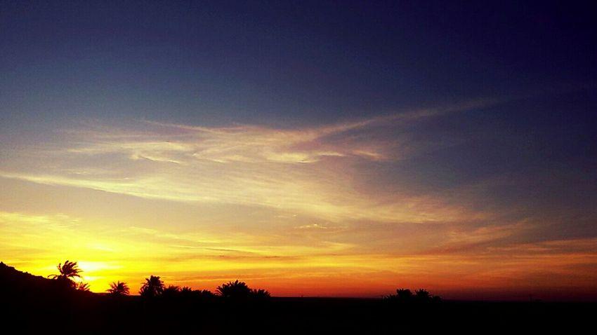 Desert Desert Beauty Good Morning World! Have A Nice Day♥ Palm Trees Sunrise Sky And Clods Algeria Adrar