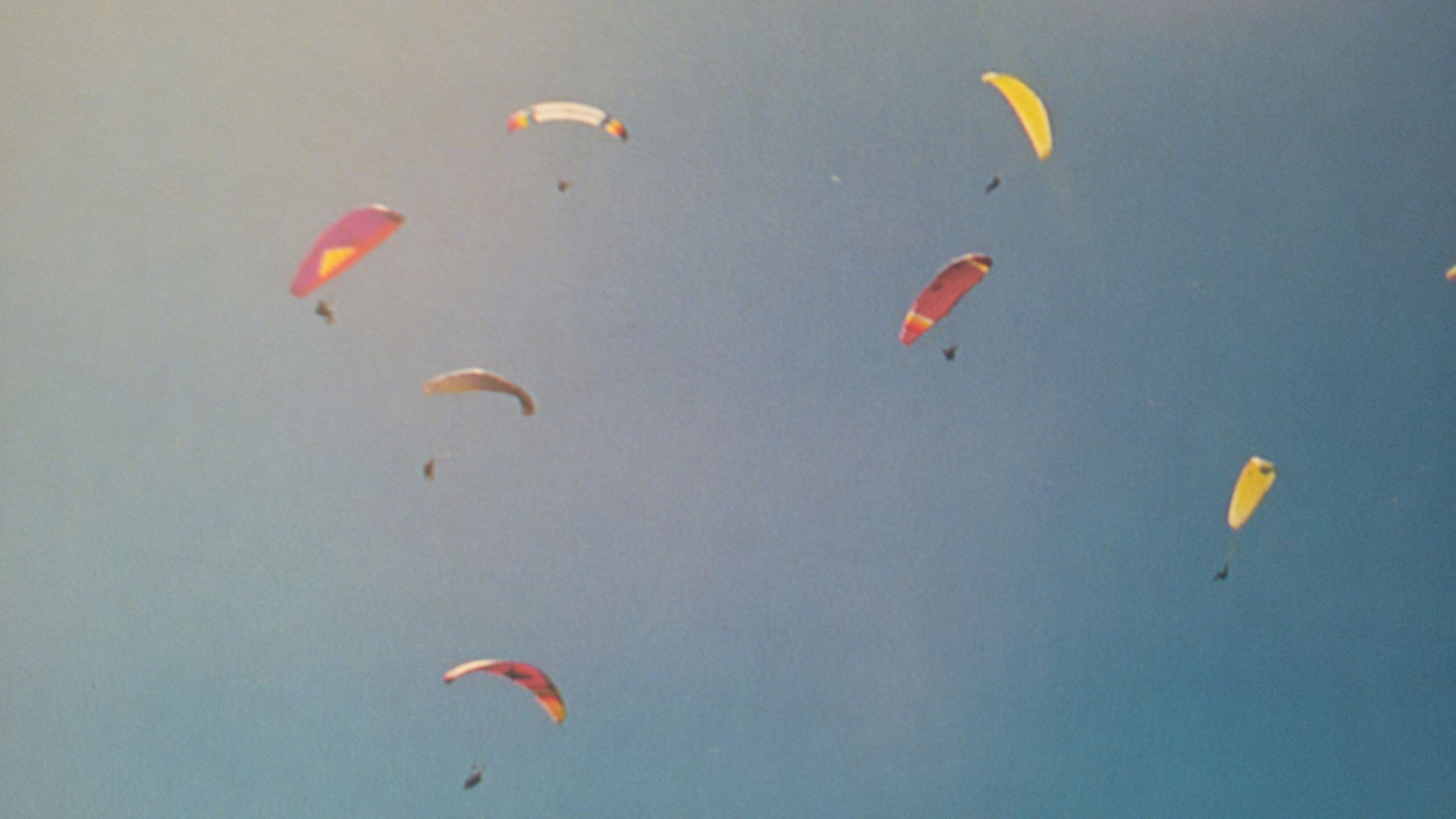 flying, mid-air, parachute, multi colored, paragliding, adventure, extreme sports, underwater, exhilaration, fish, sea life, nature, swimming, blue, high angle view, beauty in nature, tranquility, day, undersea, water