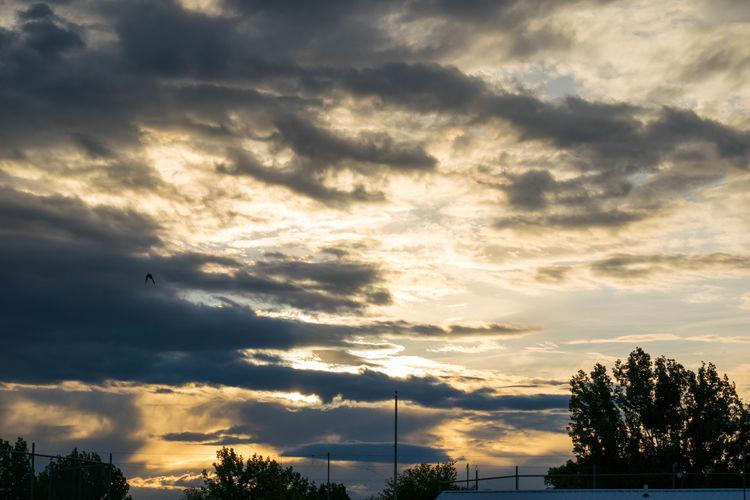 Atmosphere Close-up Cloudporn Clouds Idyllic Sky Sky Scape Sunset