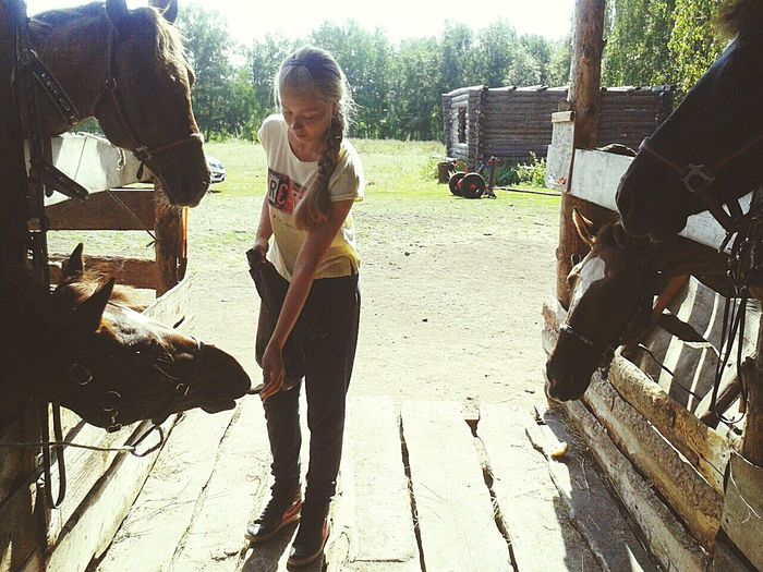 Dasha is feeding horses Horses Feeding Horses Traveling Adventure Club Adventure Nature Travelling Photography Nature_collection Naturephotography Beauty Is Everywhere  The Week Of Eyeem The EyeEm Collection On My Way Calm Eyeem Market
