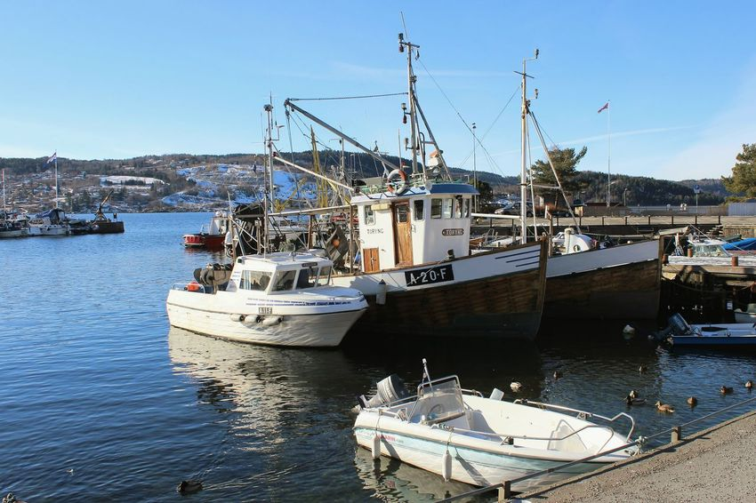 Nautical Vessel Transportation Water Moored Drøbak Harbour Norway Oslofjord Sea Scenics Boats Day Outdoors Clear Sky Sea_collection Sunlight No People