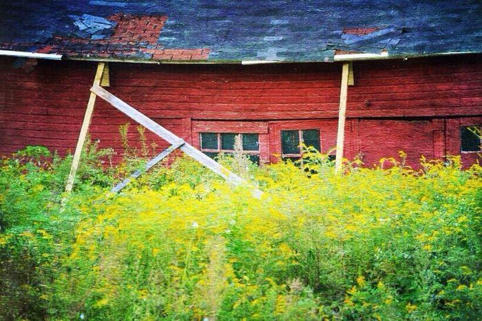 Rural Decay Red Barn Love EyeEmBestEdits Brickstalker