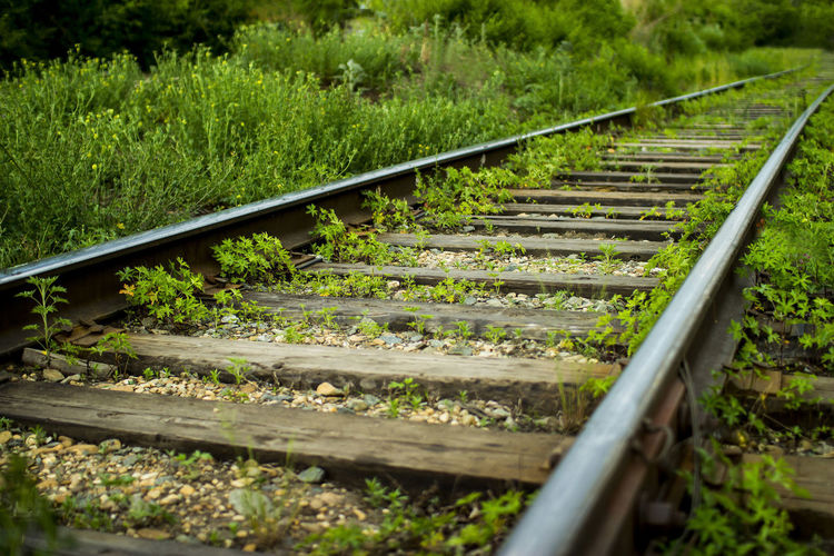 Surface level of railroad tracks on field