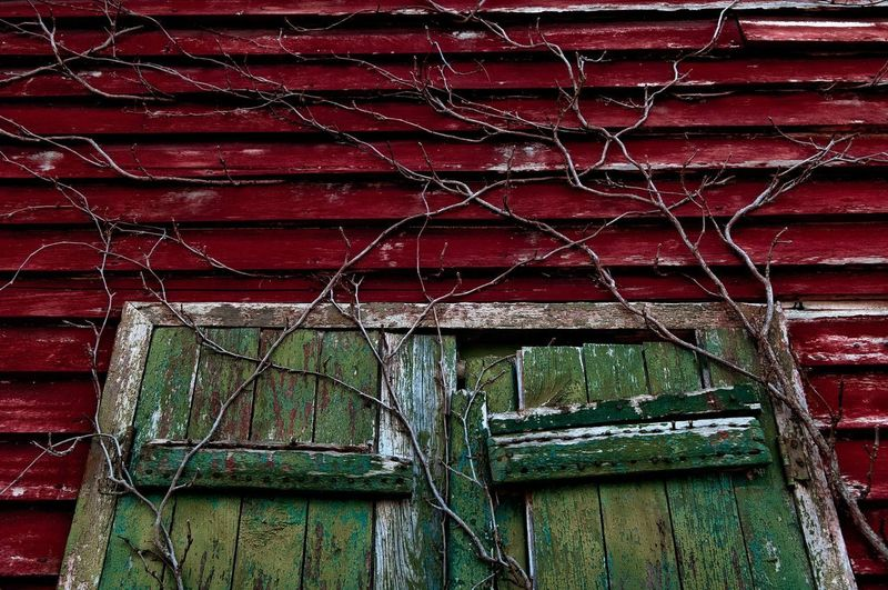 Close-up of abandoned building