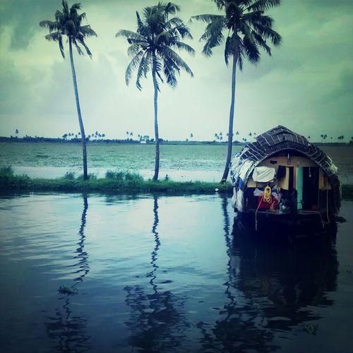 Tree House Boat Alapphuza Kerala
