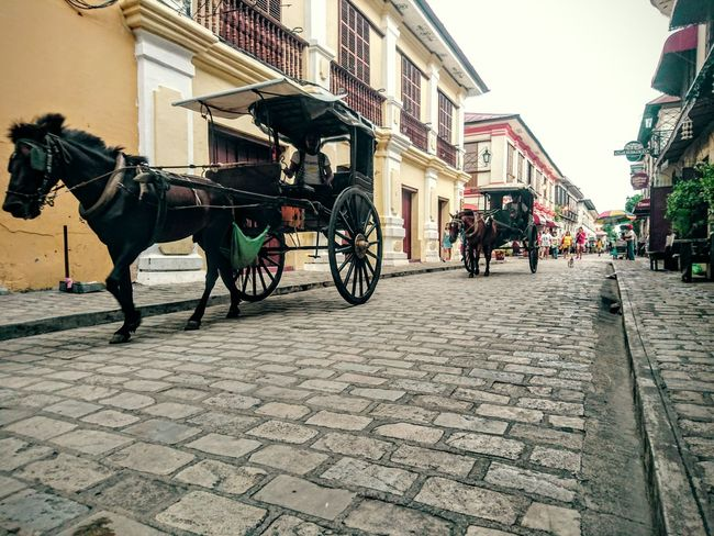 Kalesa ride Vigan Philippines Horse Carriage Heritage EyeEm Gallery Ilocos Norte, Philippines  Traveling Vintage EyeEm Phillipines