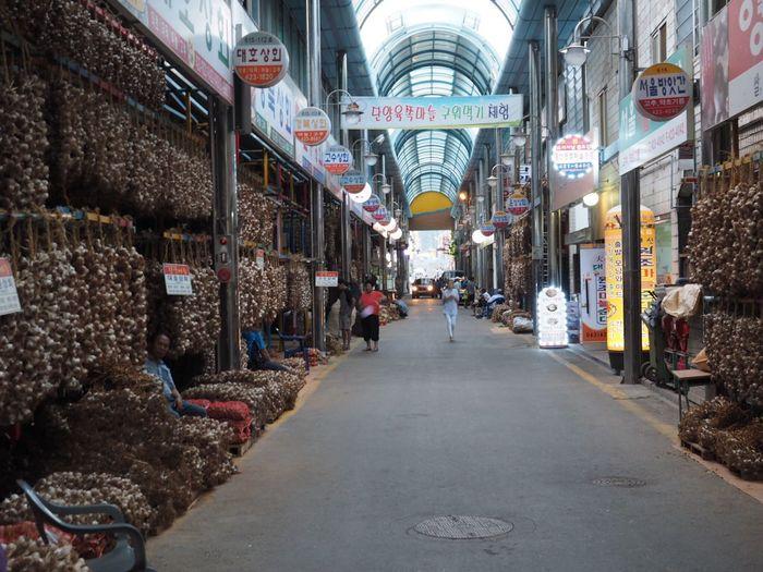 Bazaar Garlic Street Road Outdoors Danyang Garlic Market Olympus OM-D EM-1