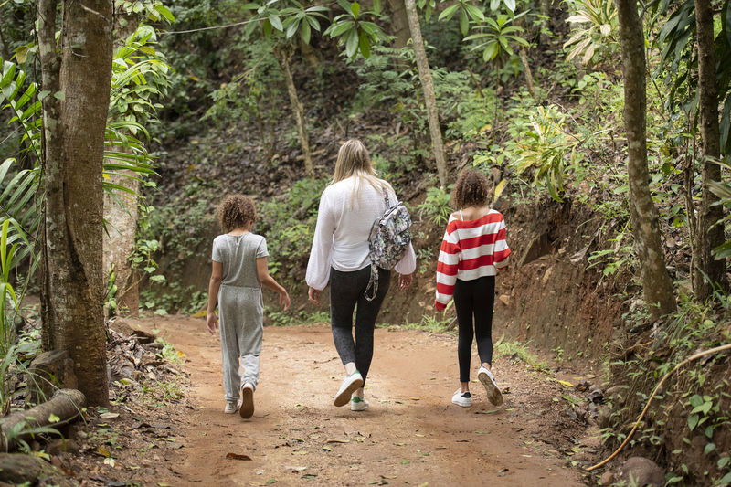 Rear View Of Woman With Daughters Walking On Dirt Road In Forest