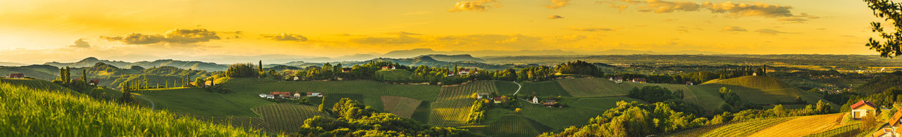 Panorama sunset over south styria vineyard landscape in steiermark, austria.