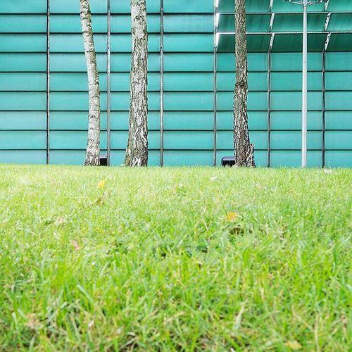 Berlin Berlintiergarten Tiergarten Nordischebotschaften Nordicembassies