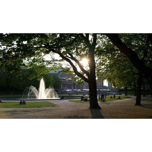 Parc du Cinquantenaire • Jubelpark • Parque de Cincuentenario 🌞 Picbyme Brussels Bruselas Bruxelles Belgium Bélgica Prettynature Jubelpark Parcdecinquantenaire Lovebrussels Capital Europe Fountain Green Nature Schuman Luxemburg